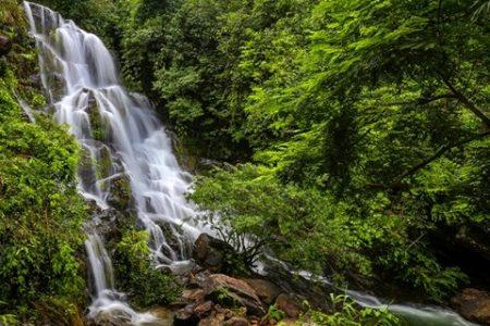 Du lịch Quảng Bình: Điểm du lịch sinh thái Vườn thực vật đón hơn 16,5 ngàn lượt khách quốc tế