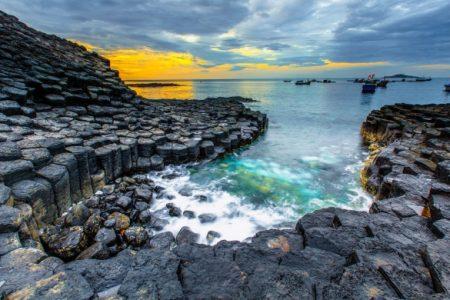 Tour Quy Nhơn: Khám phá xứ Nẫu – Hoa vàng trên cỏ xanh