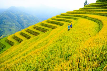 Tour Quảng Bình – Sa Pa 3 ngày 4 đêm