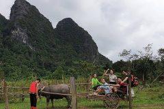 Khu vực Phong Nha - Kẻ Bàng: Điểm du lịch cộng đồng lý tưởng