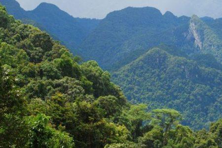 Du khách sẽ có thể ngắm cảnh Phong Nha – Kẻ Bàng từ trên cao