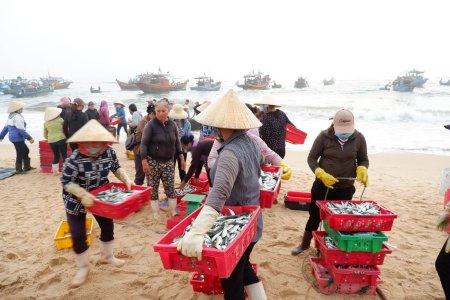 Chợ cá Nhân Trạch Quảng Bình